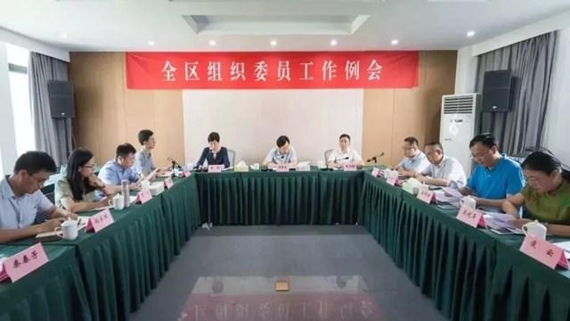 全面贯彻新时代党的组织路线  全区组织委员工作例会召开