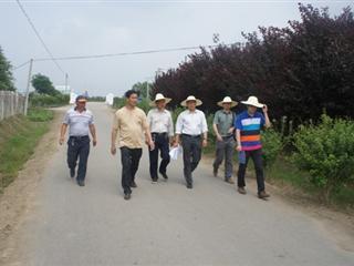 我村顺利通过吴江市环境整治考察组的验收