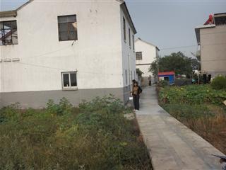 联民村村庄环境整治墙面涂白