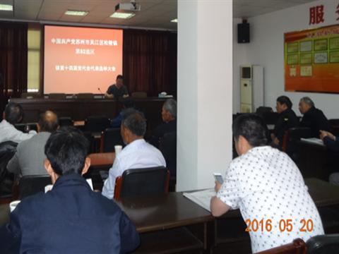 姚家港村召开区镇两级党代表选举大会
