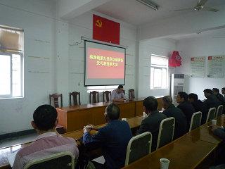 富乡村召开区镇两级党代表选举大会
