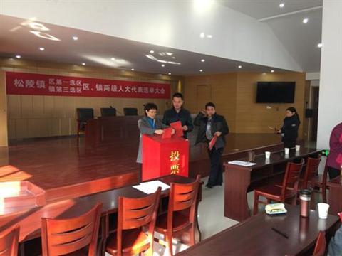 联团村顺利完成区镇两级人大代表换届选举工作