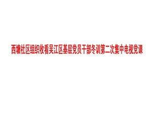 西塘社区组织收看吴江区基层党员干部冬训第二次集中电视党课