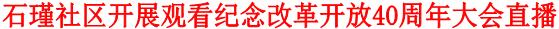 石瑾社区开展观看纪念改革开放40周年大会直播