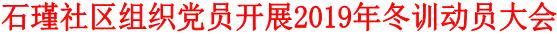 石瑾社区组织党员开展2019年冬训动员大会