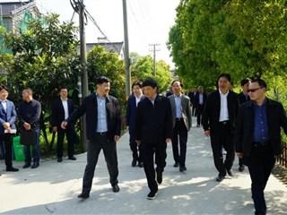 市领导来吴江开发区巡河,河长制工作获肯定