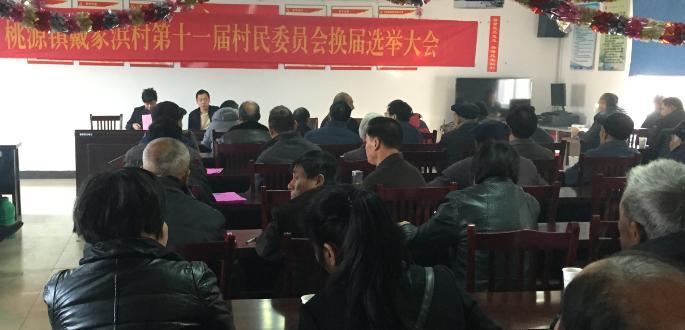 戴家浜村召开第十一届村民委员会换届选举大会